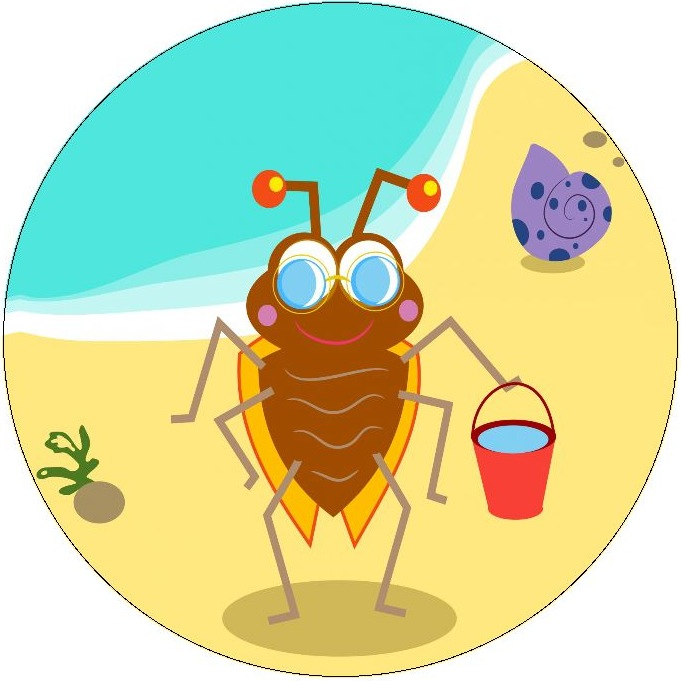 Beach Bug Pinback Buttons and Stickers