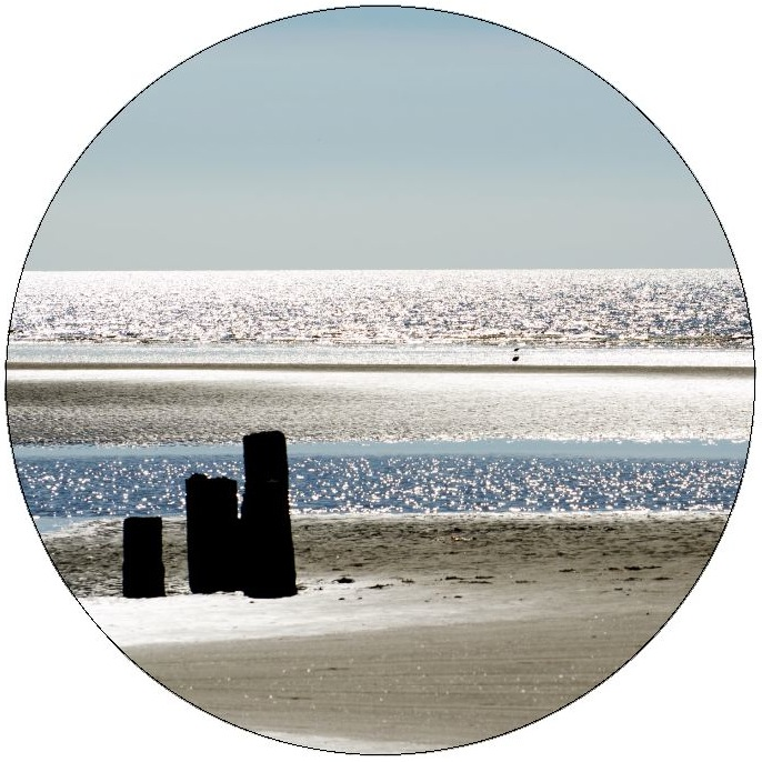 Beach Pilings Pinback Button and Sticker