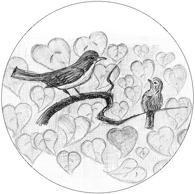 Bird Pencil Drawing Pinback Buttons and Stickers