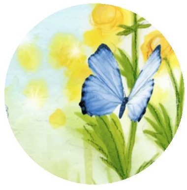 Butterfly Pinback Buttons and Stickers