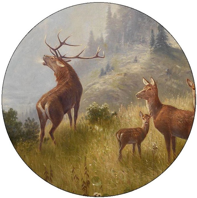 Deer and Elk Pinback Buttons and Stickers