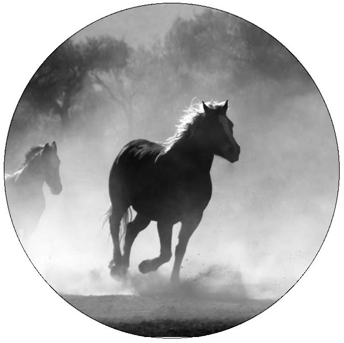Wild Horse Pinback Buttons and Stickers
