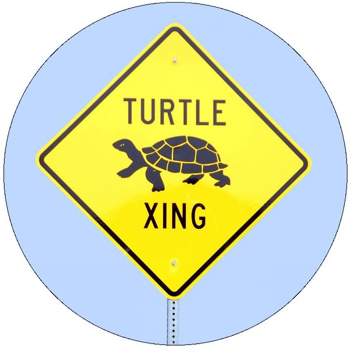 Turtle Crossing Sign Pinback Button and Stickers