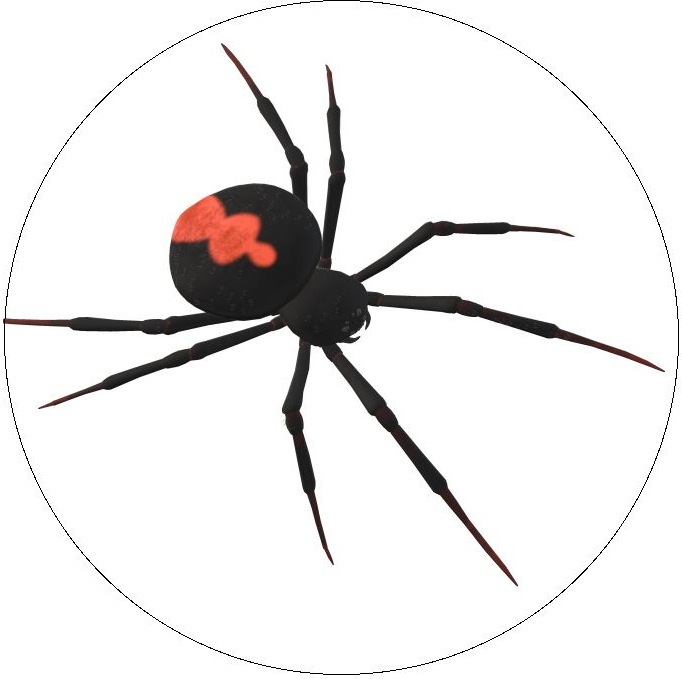 Spider Web Pinback Button and Stickers