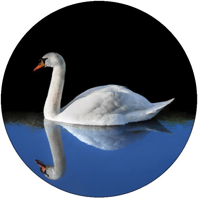 Waterfowl Pinback Buttons and Stickers