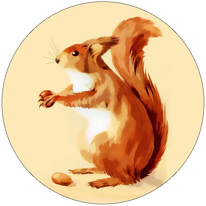 Squirrel Pinback Buttons and Stickers